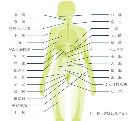 6種類の高周波電極で身体のさまざまな部位に対応